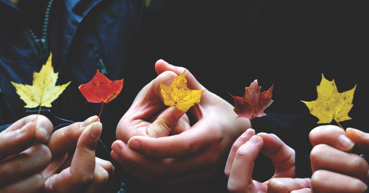 Descobrindo Provérbios: O valor dos relacionamentos