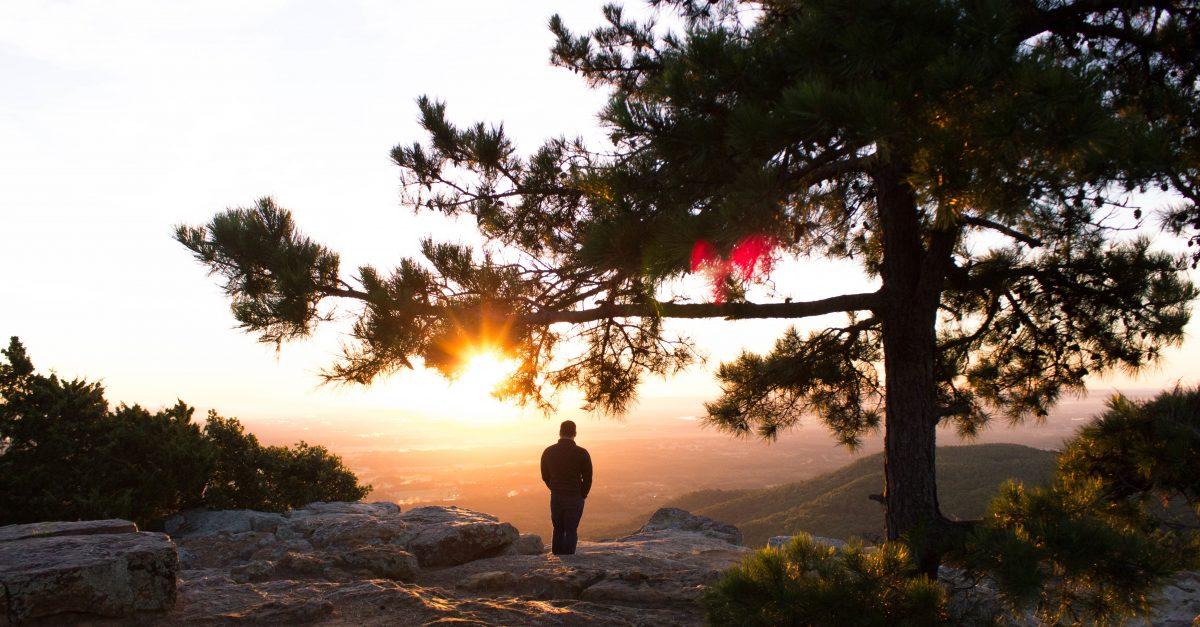 Descobrindo Provérbios: Atos da Criação
