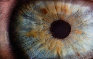 Diante dos olhos de Deus