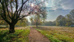 Um caminho ao encontro de Jesus