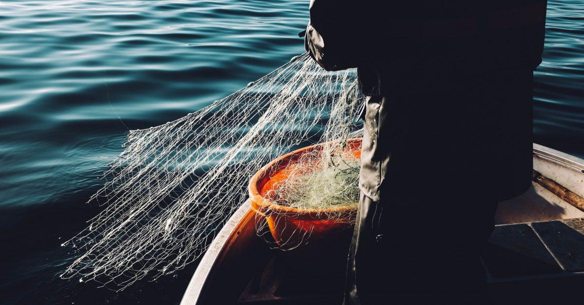 Vou Pescar! Quer ir comigo?